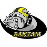 Bulldog_Bantam